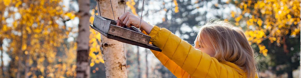 north-fulton-tree-service-feature